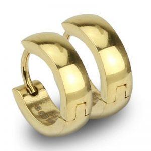 Náušnice zlacené kroužky AN1232 chirurgická ocel