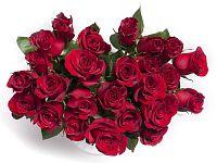 kytice ruzi